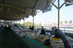 taschkent024